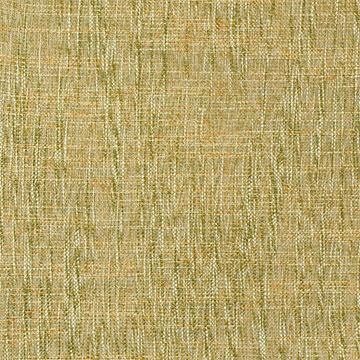Broward Grass