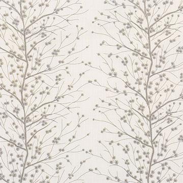 Habersham Birch