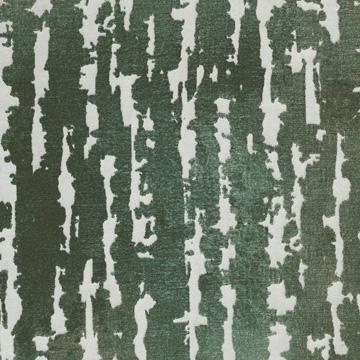 Phylum Green