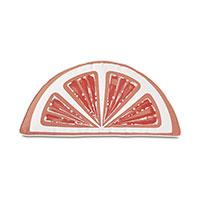 Palencia Handpainted Citrus Decorative Pillow in Melon