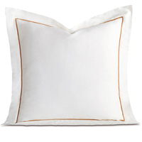 Linea Velvet Ribbon Euro Sham In White & Antique