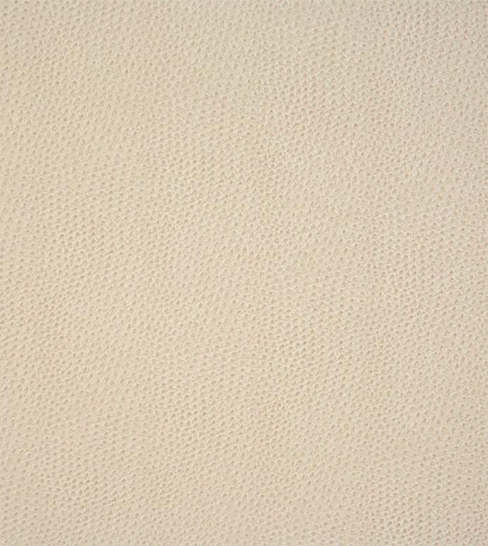 Scarpa Sandstone