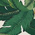 Lanai Palm