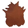 Tudor Cognac Leather Hide Full