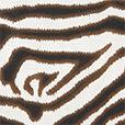 Kalahari Sand