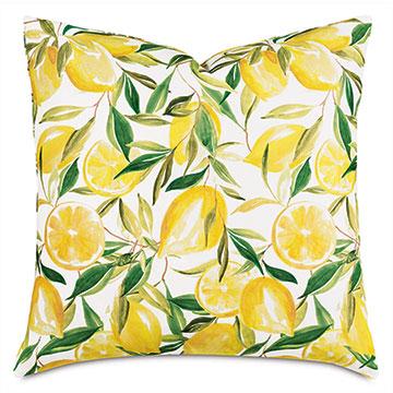 Meyer Lemons Decorative Pillow