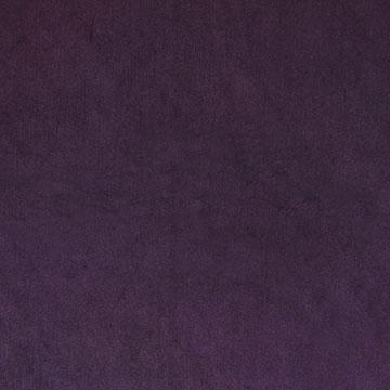 Uma Purple