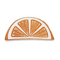 Palencia Handpainted Citrus Decorative Pillow in Orange