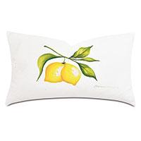Meyer Handpainted Decorative Pillow