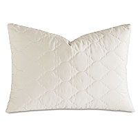 Viola Quilted Queen Sham in Ivory